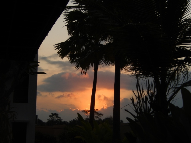 palmzonsondergang.jpg